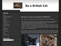 http://www.chats-british-shorthair.com