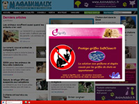 http://www.maganimaux.com